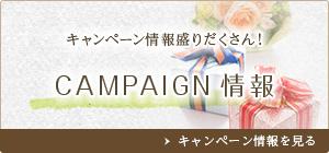 キャンペーン情報盛りだくさん!